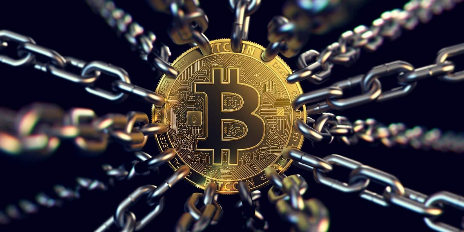 Quel pays utilise la monnaie Bitcoin ?